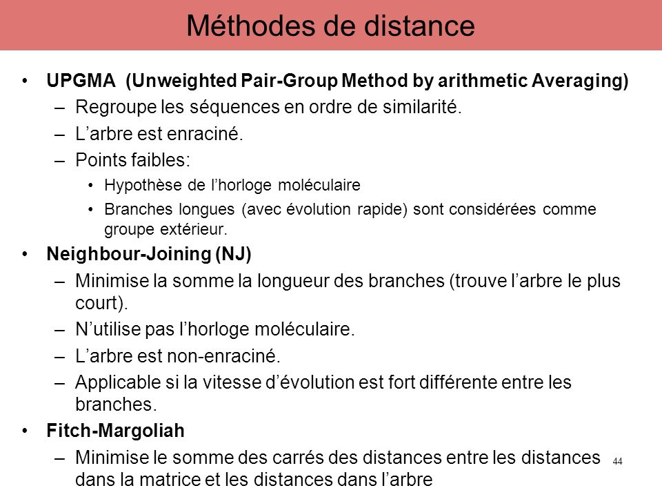 Méthodes de distance UPGMA (Unweighted Pair-Group Method by arithmetic Averaging) Regroupe les séquences en ordre de similarité.