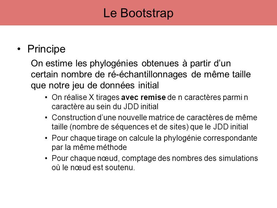 Le Bootstrap Principe.