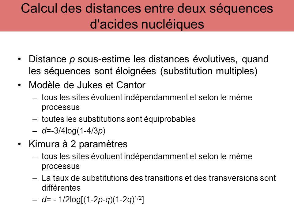 Calcul des distances entre deux séquences d acides nucléiques