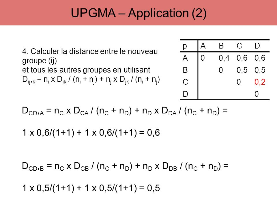 UPGMA – Application (2) p. A. B. C. D. 0,4. 0,6. 0,5. 0,2. 4. Calculer la distance entre le nouveau groupe (ij)