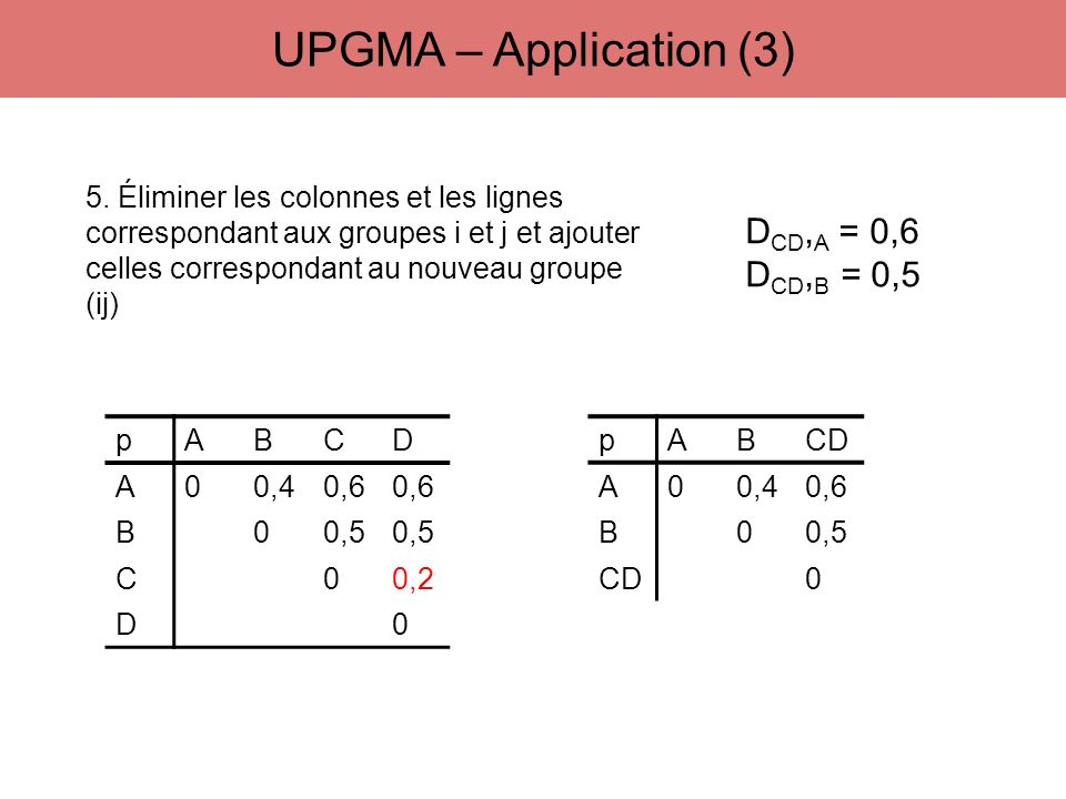 UPGMA – Application (3) DCD,A = 0,6 DCD,B = 0,5