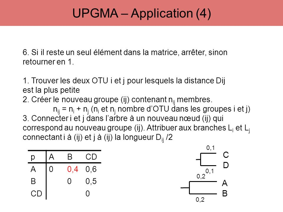 UPGMA – Application (4) C D A B