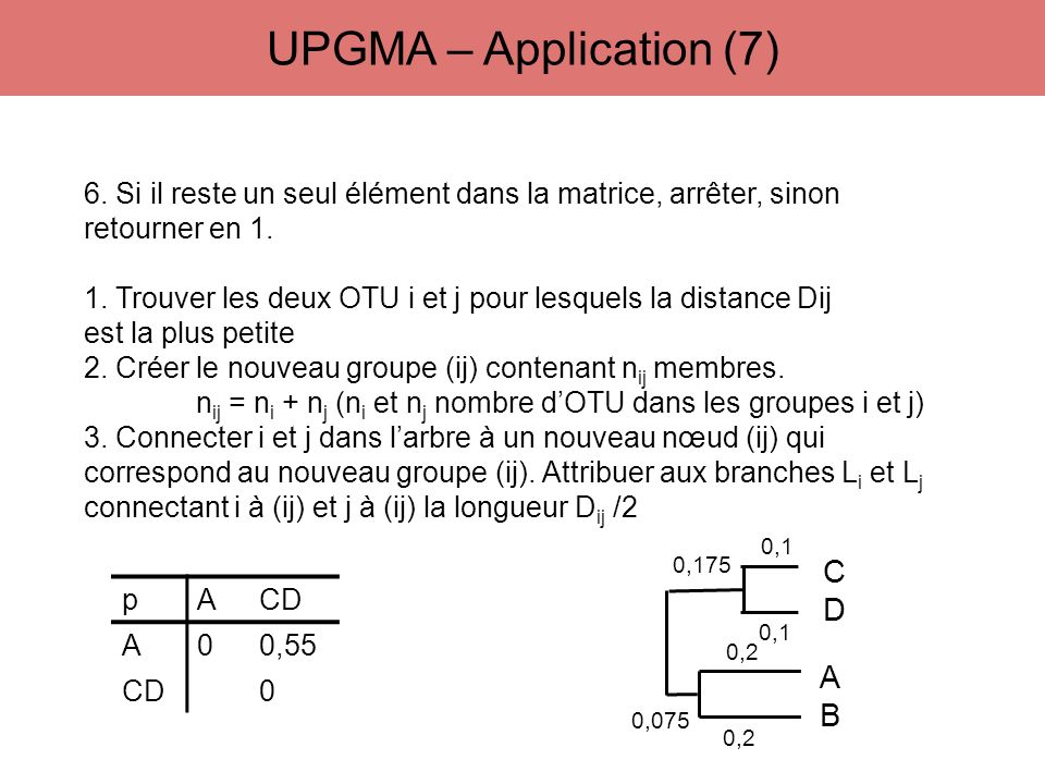 UPGMA – Application (7) C D A B