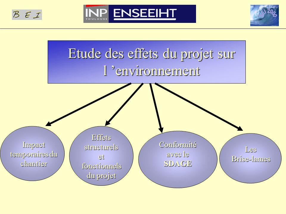 Etude des effets du projet sur l 'environnement