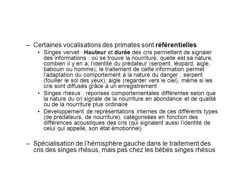 Certaines vocalisations des primates sont référentielles