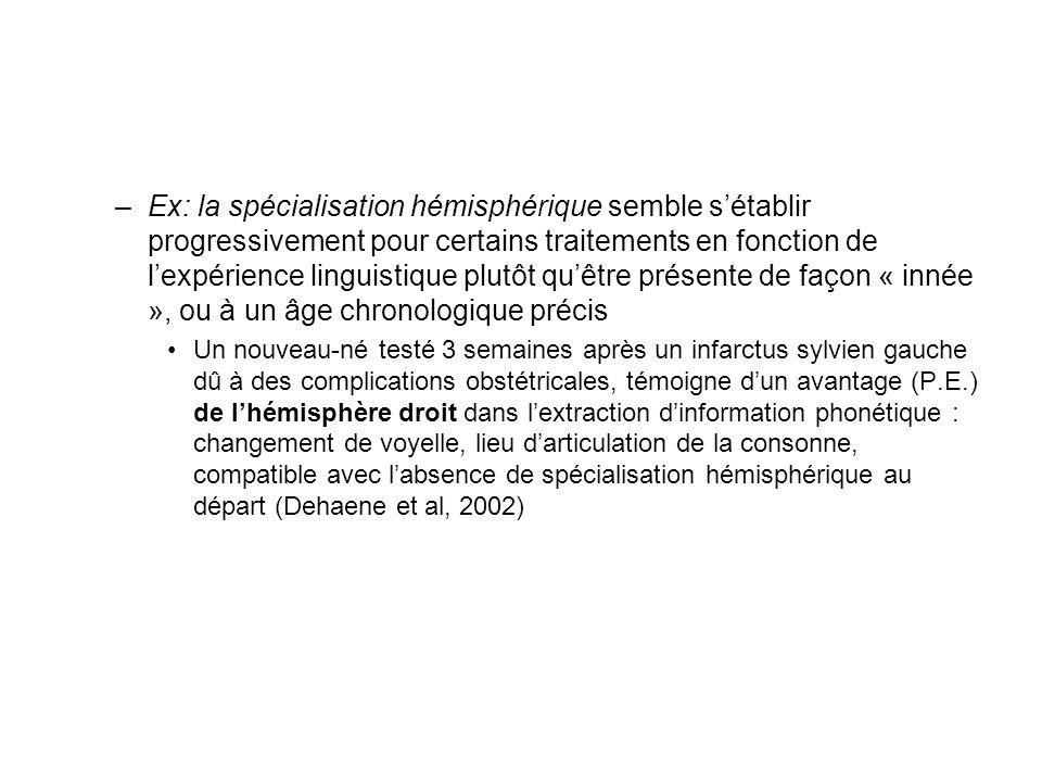 Ex: la spécialisation hémisphérique semble s'établir progressivement pour certains traitements en fonction de l'expérience linguistique plutôt qu'être présente de façon « innée », ou à un âge chronologique précis
