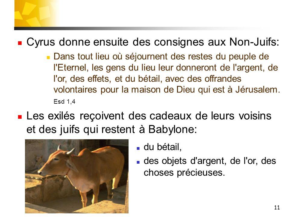 Cyrus donne ensuite des consignes aux Non-Juifs: