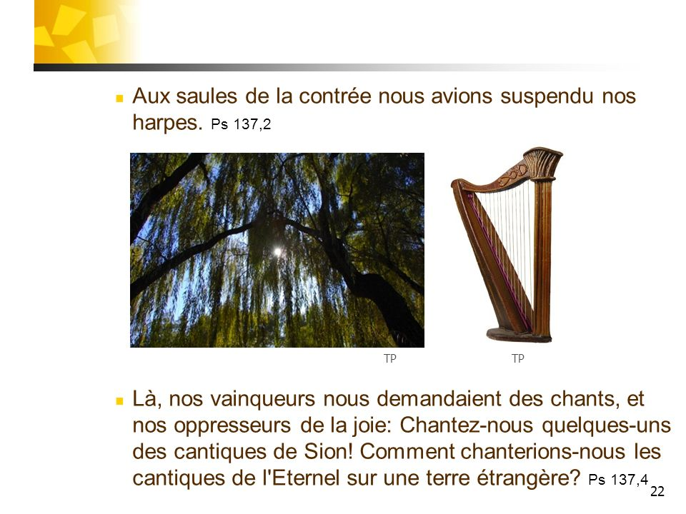 Aux saules de la contrée nous avions suspendu nos harpes. Ps 137,2