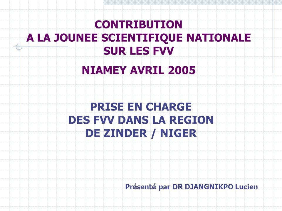 CONTRIBUTION A LA JOUNEE SCIENTIFIQUE NATIONALE SUR LES FVV NIAMEY AVRIL 2005