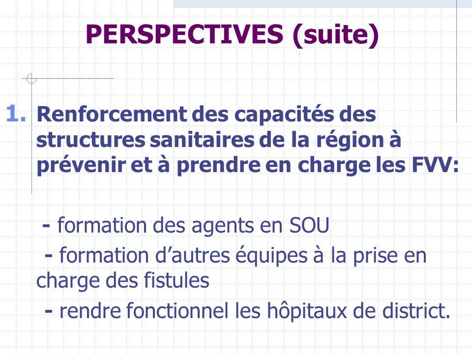 PERSPECTIVES (suite) Renforcement des capacités des structures sanitaires de la région à prévenir et à prendre en charge les FVV: