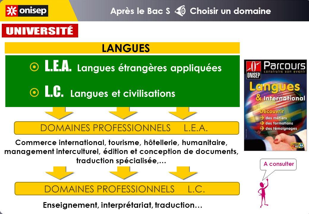 Enseignement, interprétariat, traduction…