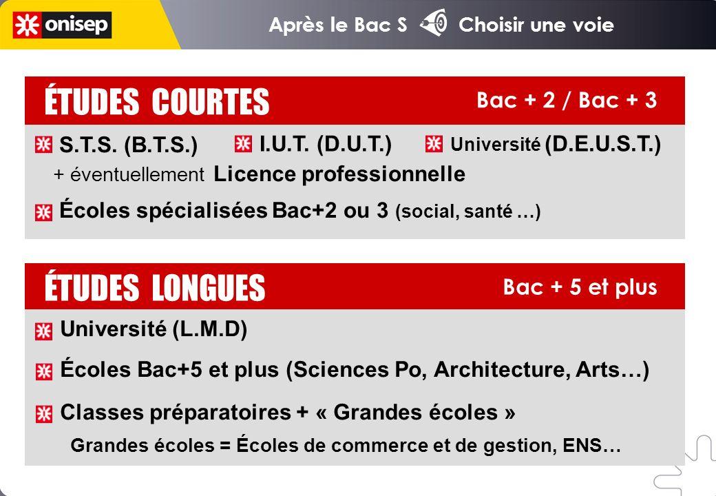 ÉTUDES COURTES ÉTUDES LONGUES Bac + 2 / Bac + 3 S.T.S. (B.T.S.)