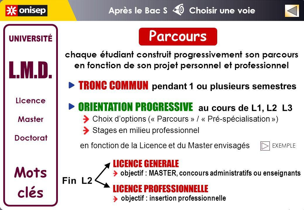 Parcours UNIVERSITÉ L.M.D. Mots clés TRONC COMMUN