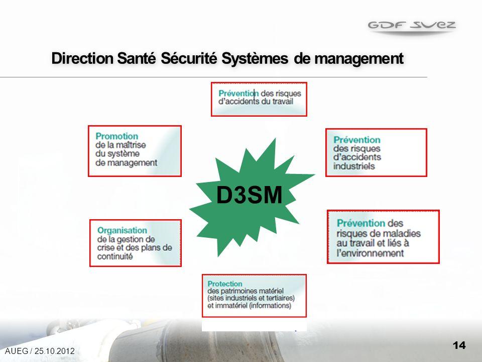 Direction Santé Sécurité Systèmes de management