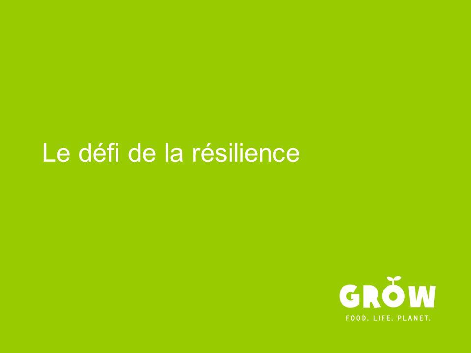 Le défi de la résilience