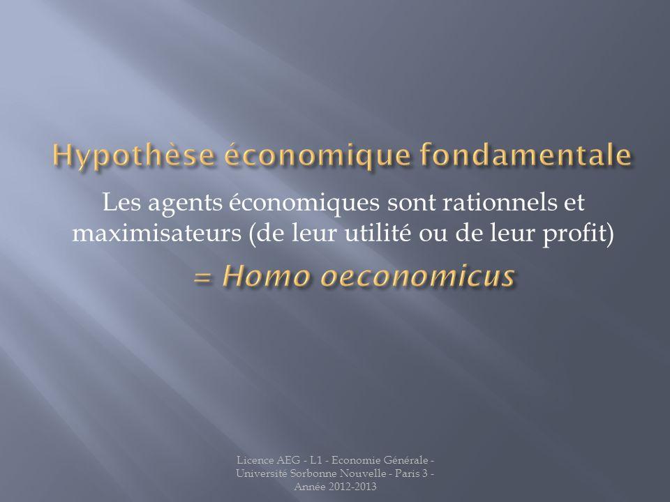 Hypothèse économique fondamentale