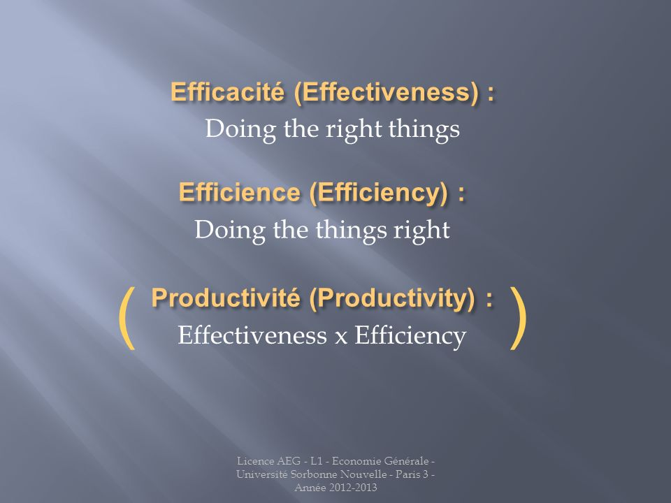 ( ) Efficacité (Effectiveness) : Doing the right things