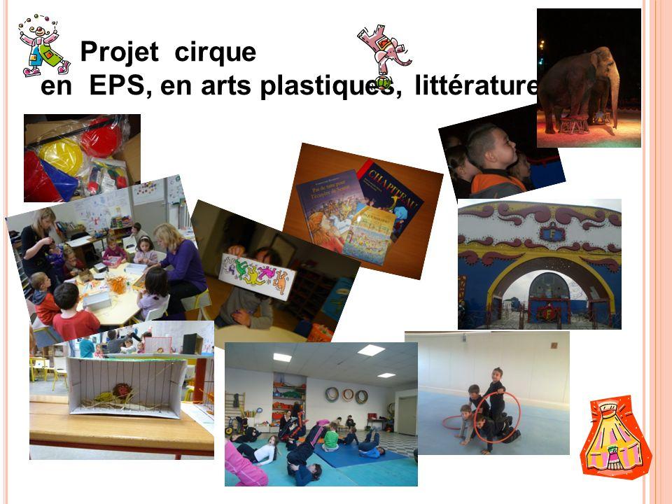 Projet cirque en EPS, en arts plastiques, littérature…