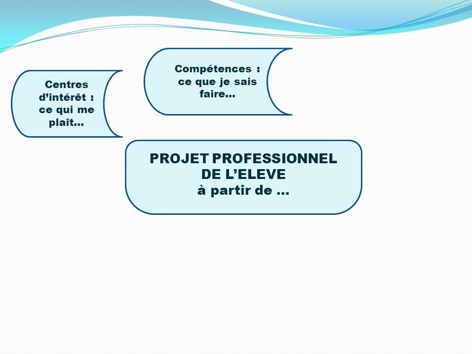 Compétences : ce que je sais faire… PROJET PROFESSIONNEL DE L'ELEVE