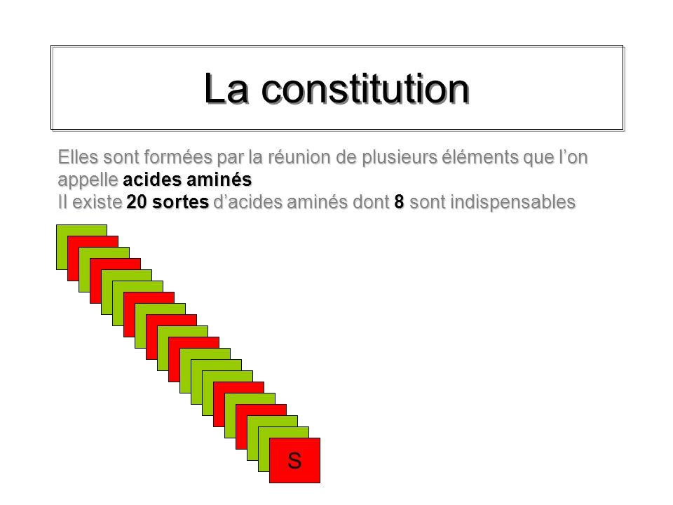 La constitution A B C D E F G H I J K L M N N O P Q R S