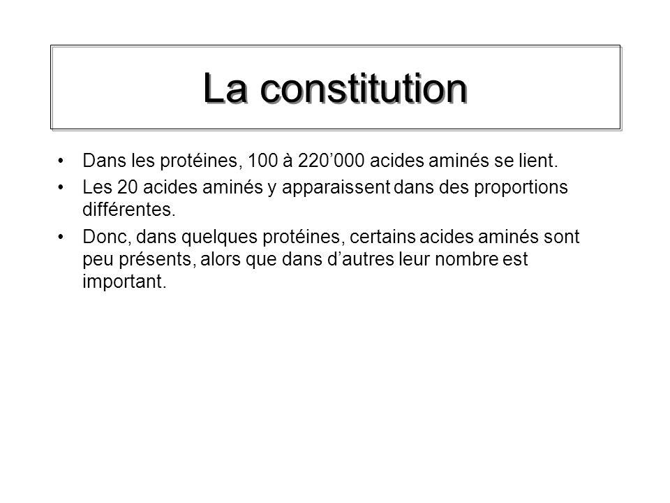 La constitution Dans les protéines, 100 à 220'000 acides aminés se lient. Les 20 acides aminés y apparaissent dans des proportions différentes.
