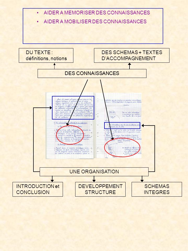 DEVELOPPEMENT STRUCTURE