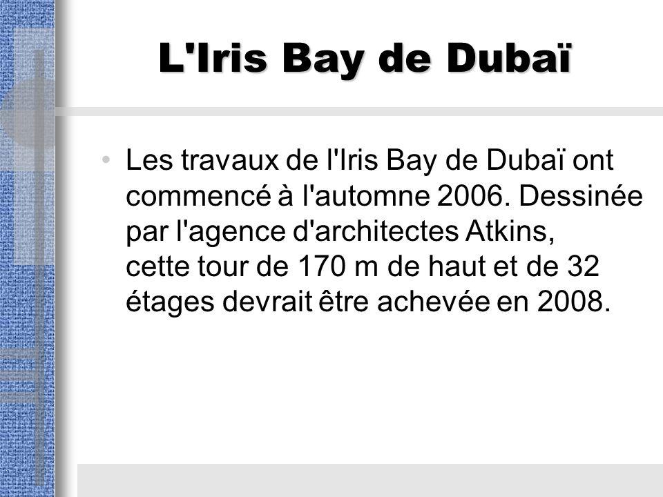 L Iris Bay de Dubaï