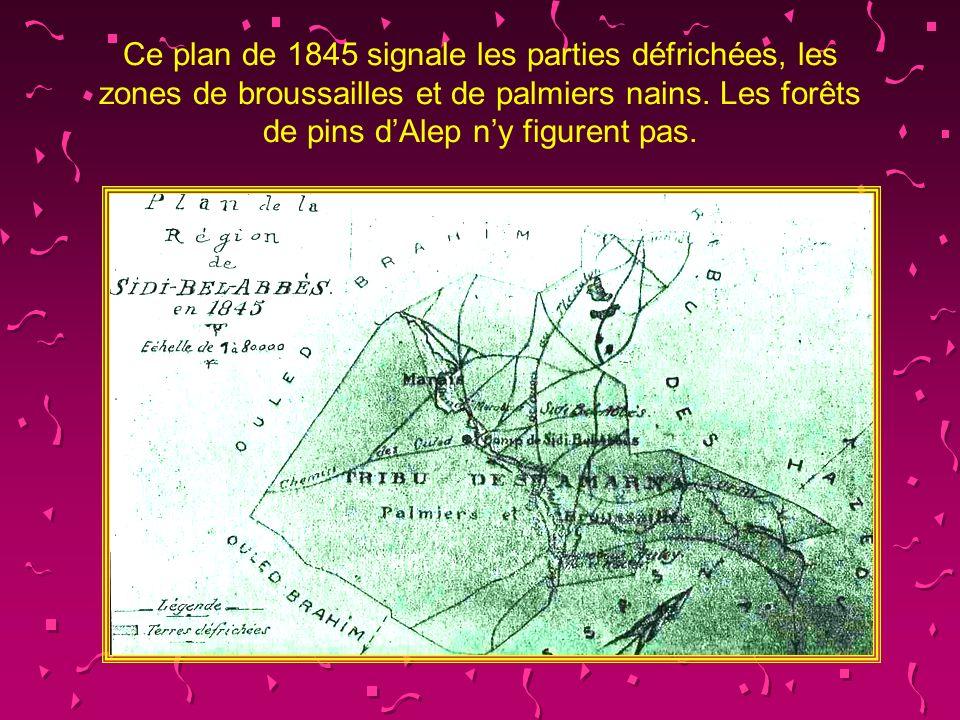 Ce plan de 1845 signale les parties défrichées, les zones de broussailles et de palmiers nains.