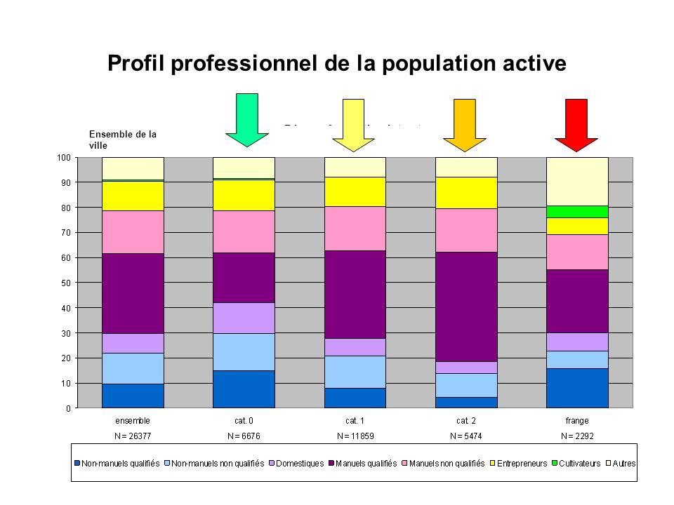 Profil professionnel de la population active
