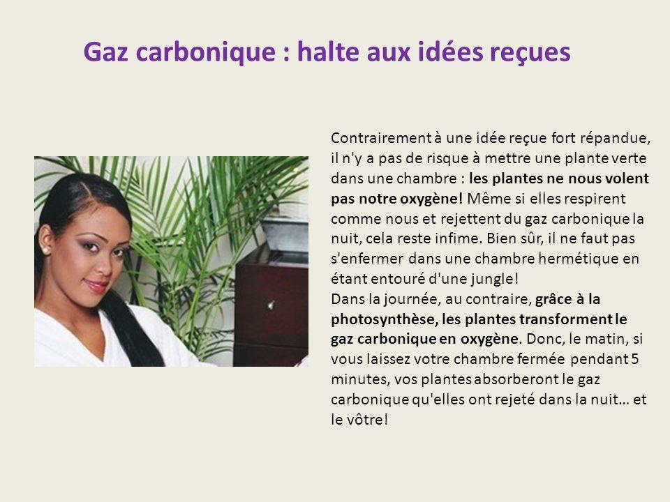 Gaz carbonique : halte aux idées reçues