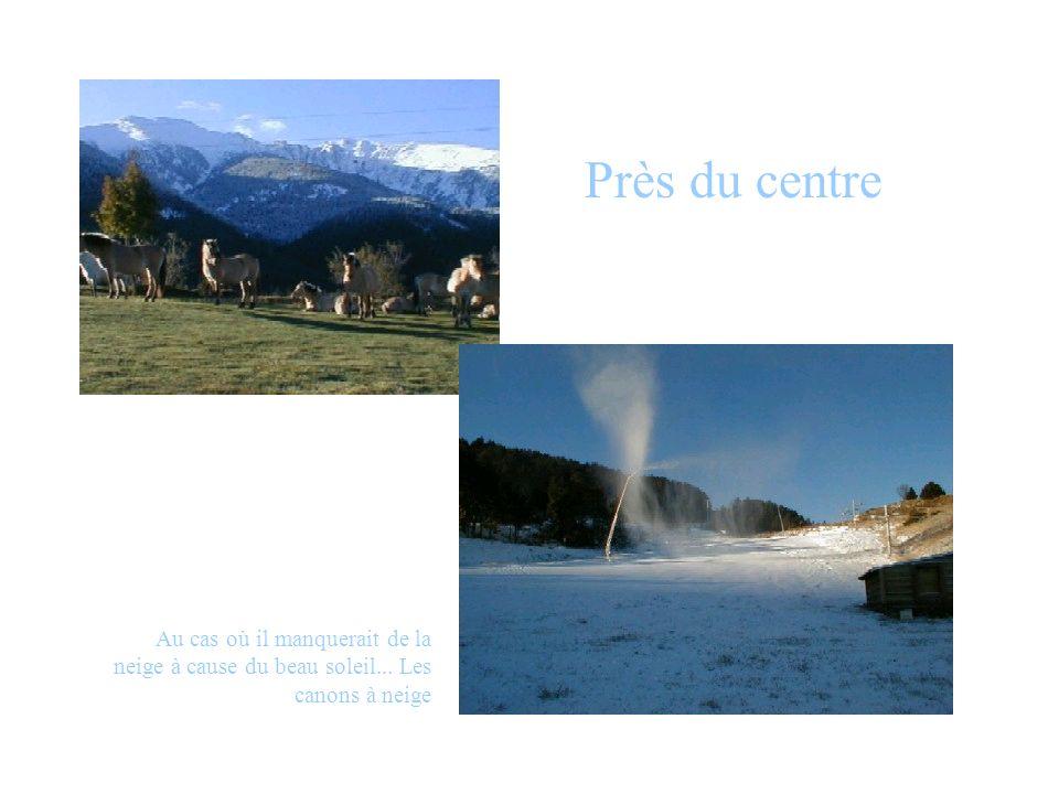 Près du centre Au cas où il manquerait de la neige à cause du beau soleil... Les canons à neige
