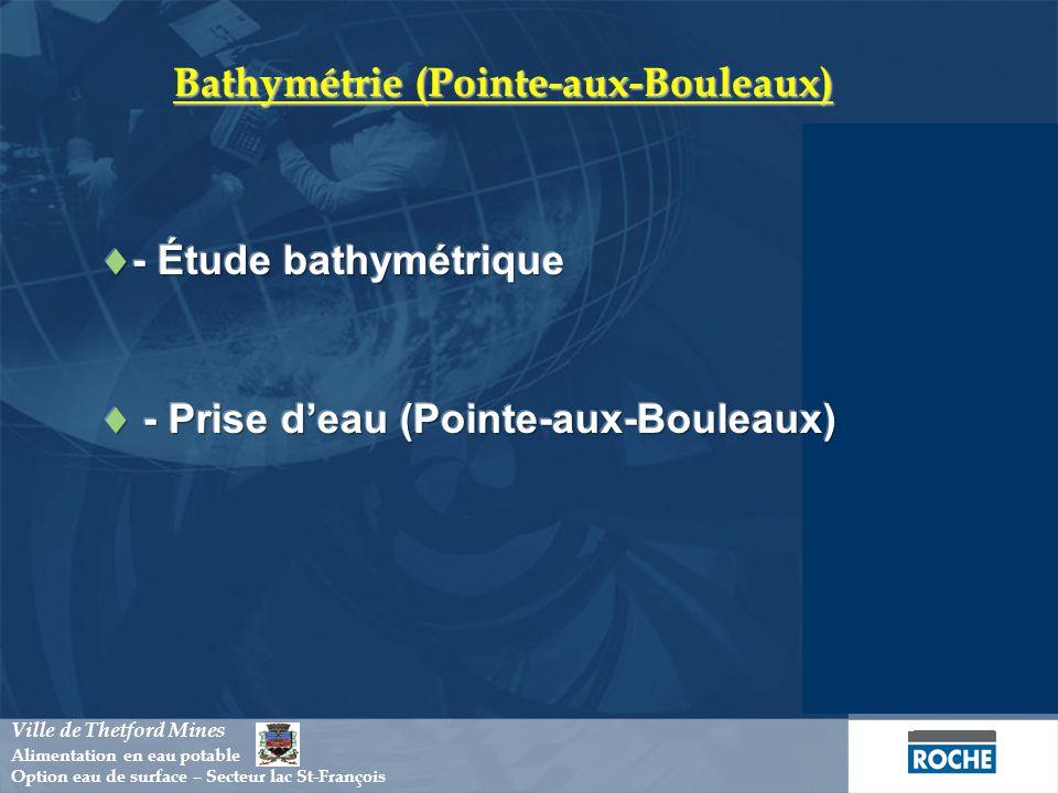 Bathymétrie (Pointe-aux-Bouleaux)