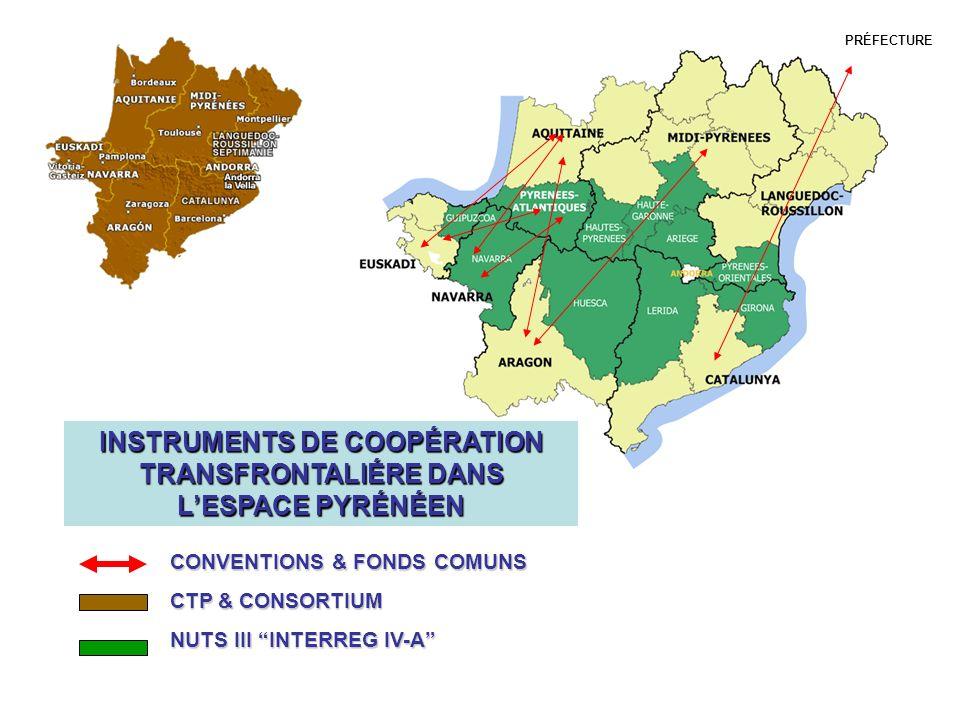 INSTRUMENTS DE COOPÉRATION TRANSFRONTALIÉRE DANS L'ESPACE PYRÉNÉEN