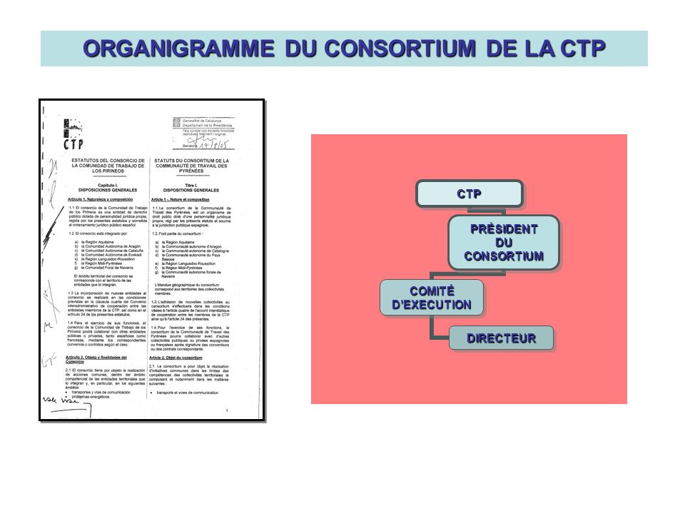 ORGANIGRAMME DU CONSORTIUM DE LA CTP