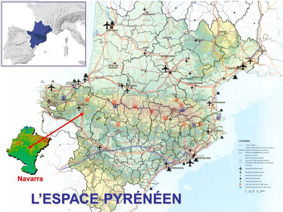 Navarra L'ESPACE PYRÉNÉEN