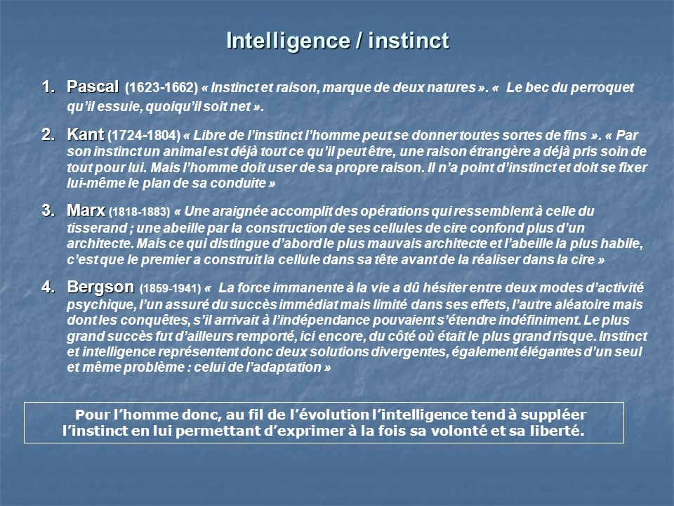 Intelligence / instinct
