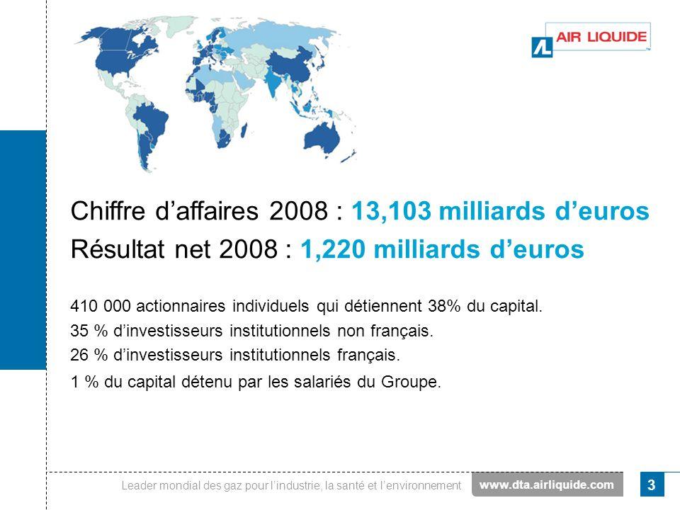 Chiffre d'affaires 2008 : 13,103 milliards d'euros
