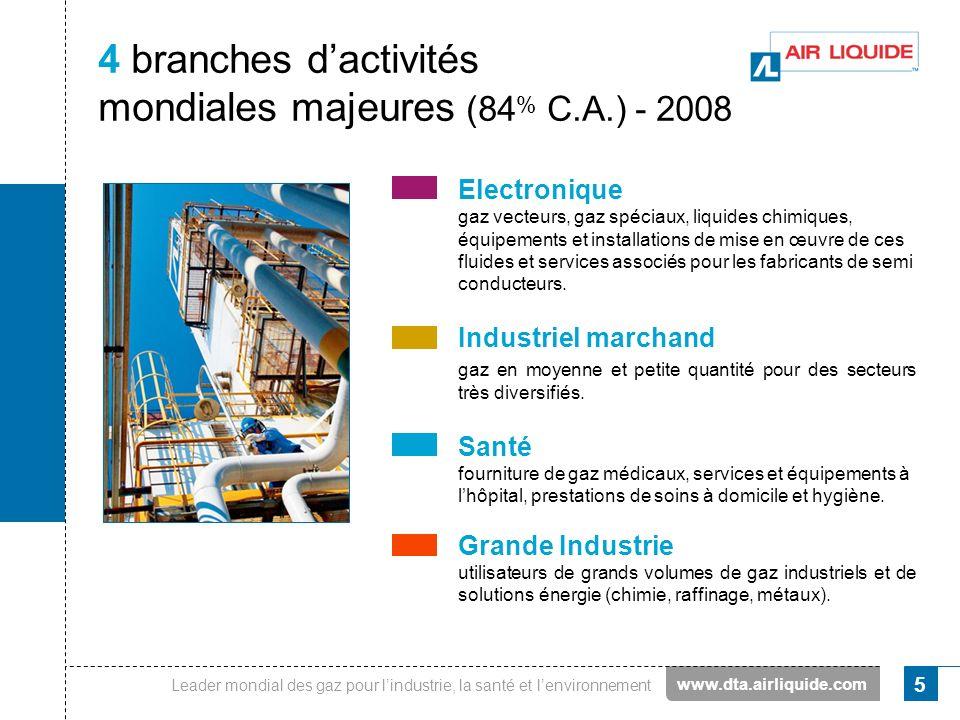 4 branches d'activités mondiales majeures (84% C.A.) - 2008