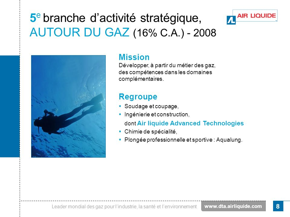 5e branche d'activité stratégique, AUTOUR DU GAZ (16% C.A.) - 2008