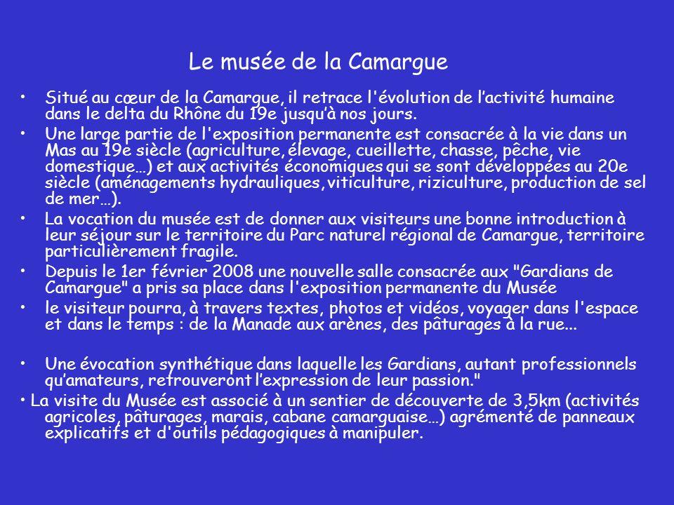 Le musée de la Camargue Situé au cœur de la Camargue, il retrace l évolution de l'activité humaine dans le delta du Rhône du 19e jusqu'à nos jours.