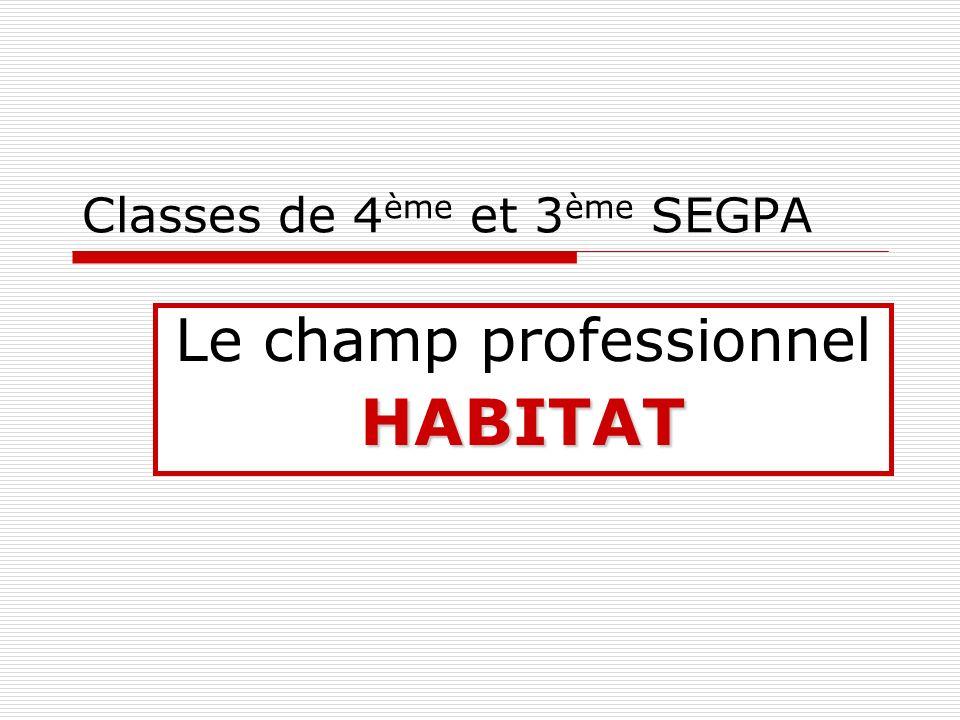 Classes de 4ème et 3ème SEGPA