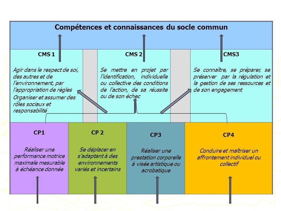 Compétences et connaissances du socle commun