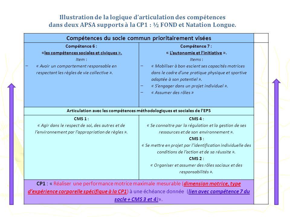 Illustration de la logique d'articulation des compétences
