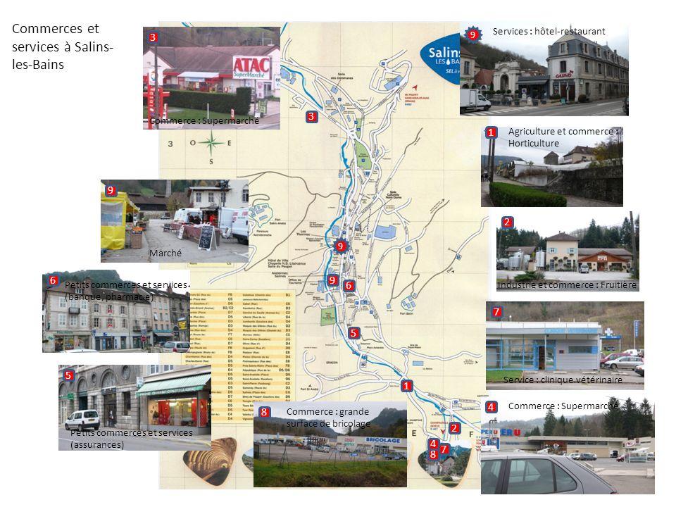 Commerces et services à Salins-les-Bains