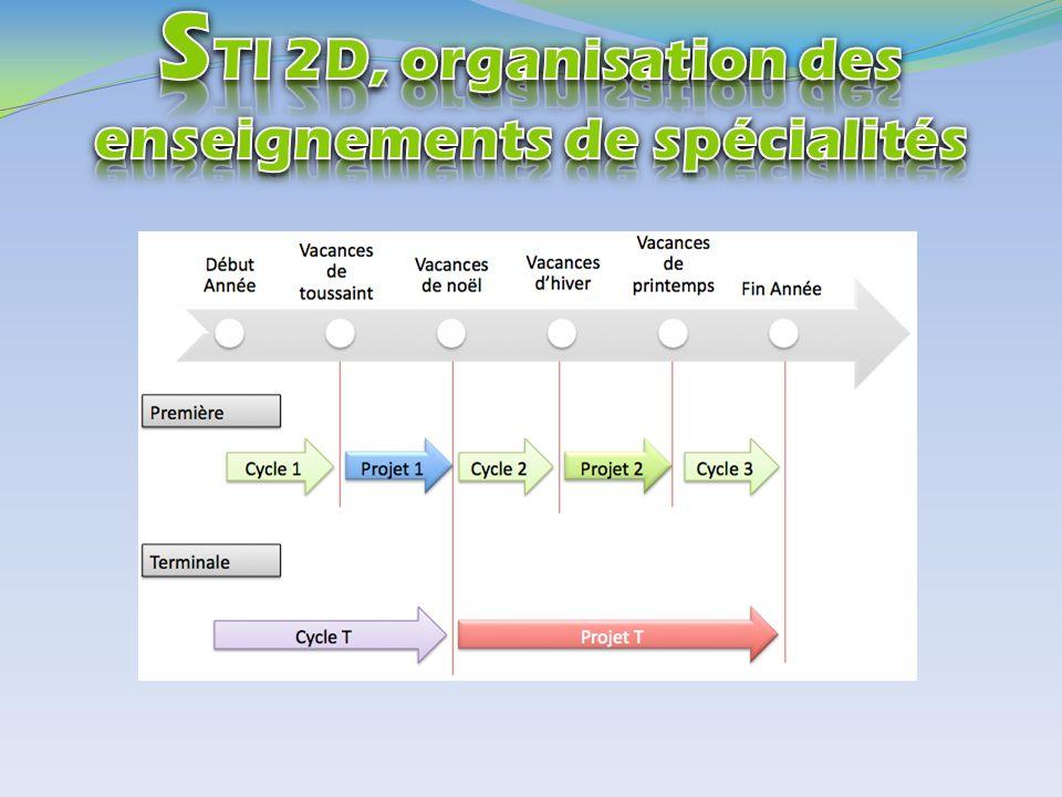 STI 2D, organisation des enseignements de spécialités