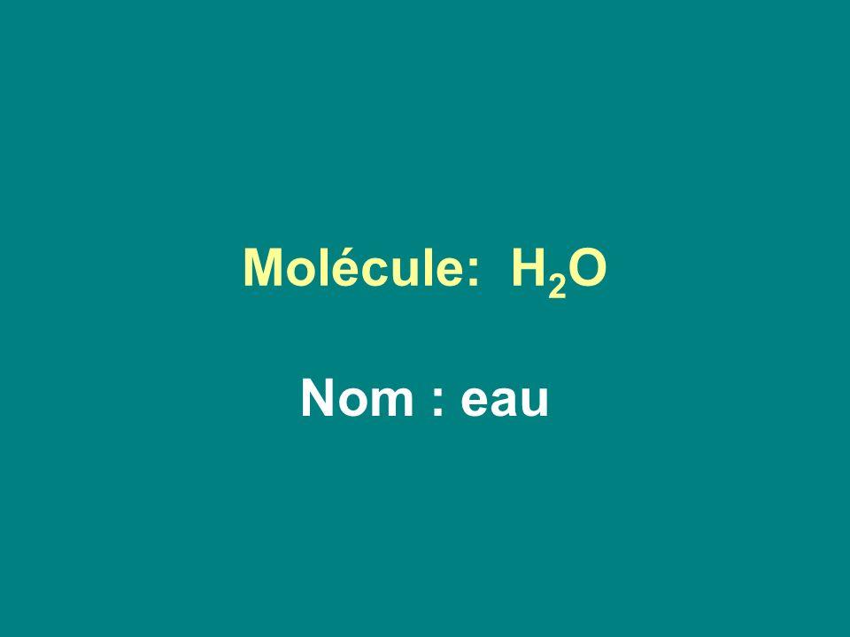 Molécule: H2O Nom : eau