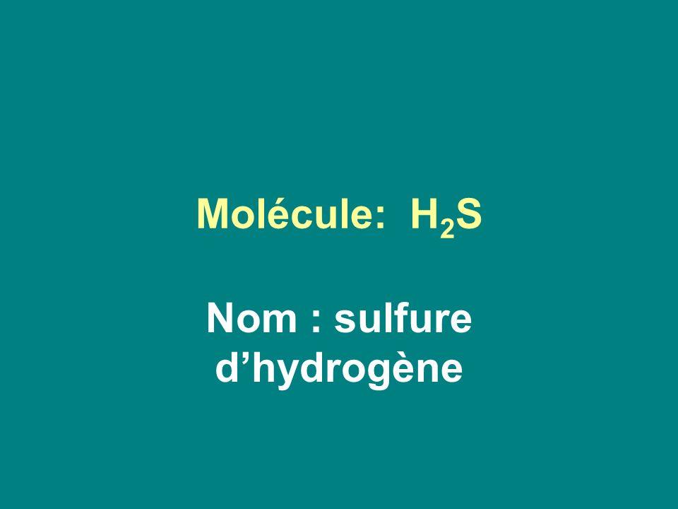 Nom : sulfure d'hydrogène