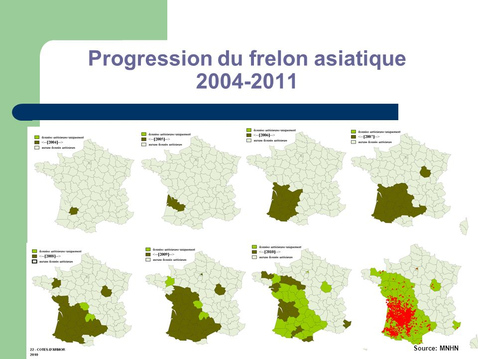 Progression du frelon asiatique 2004-2011