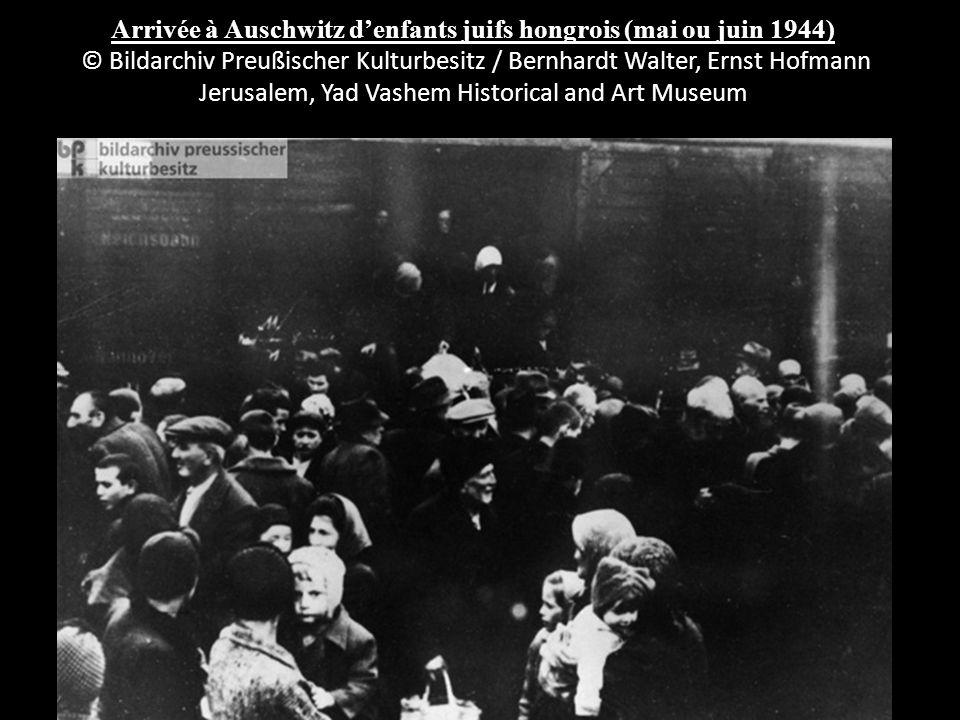 Arrivée à Auschwitz d'enfants juifs hongrois (mai ou juin 1944) © Bildarchiv Preußischer Kulturbesitz / Bernhardt Walter, Ernst Hofmann Jerusalem, Yad Vashem Historical and Art Museum