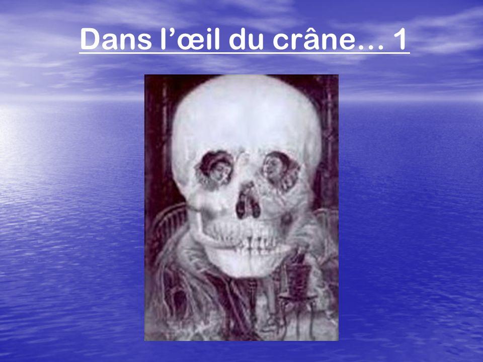 Dans l'œil du crâne… 1
